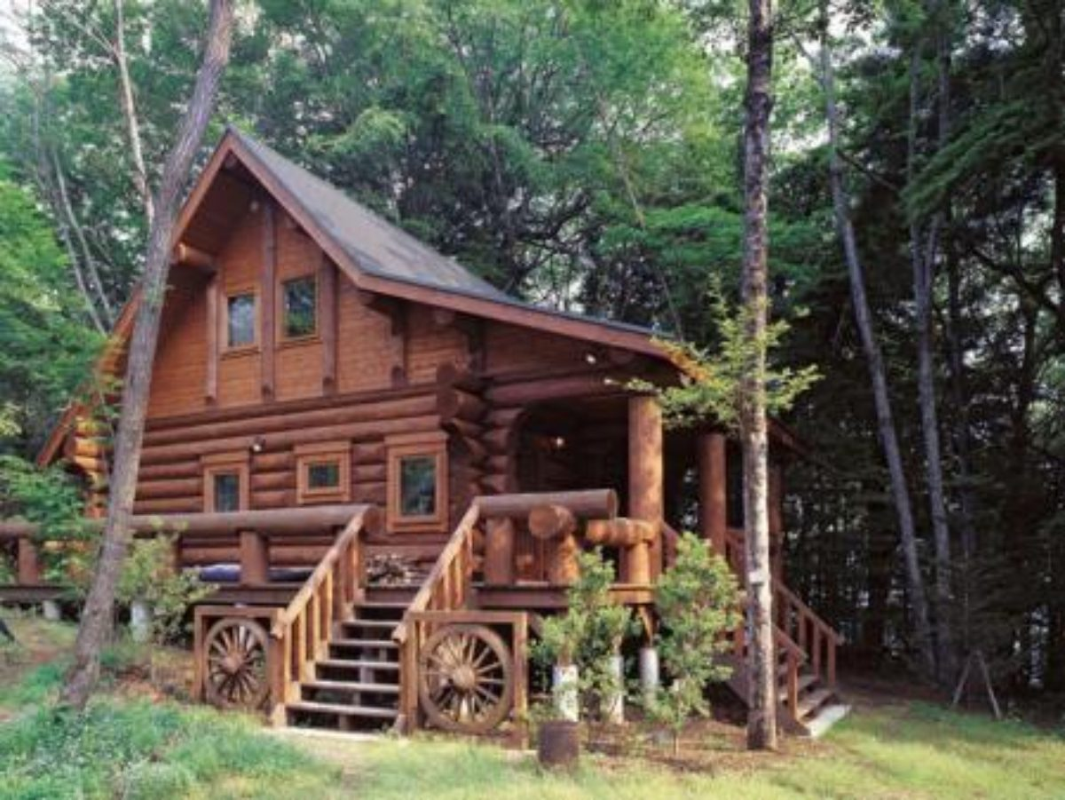 Big foot log timber homes bc log timber for Big log homes